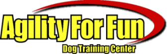 Agility For Fun | Dog training center